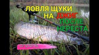ЩУКА НА СПИННИНГ ПОСЛЕ НЕРЕСТА Рыбалка на щуку 2020 Ловля Щуки на спиннинг на джиг риг