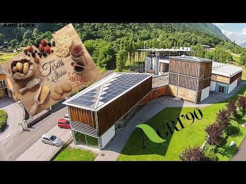 agri-90-storo- -strawberry- -yellow-corn-flour- -farina-gialla- -gallette