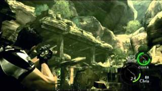 Resident Evil 5 BSAA Emblems