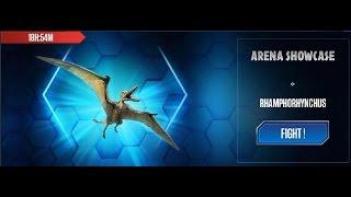Jurassic World - Showcase Rhamphorhynchus - 喙嘴龙 - ランフォリンクス 20160825