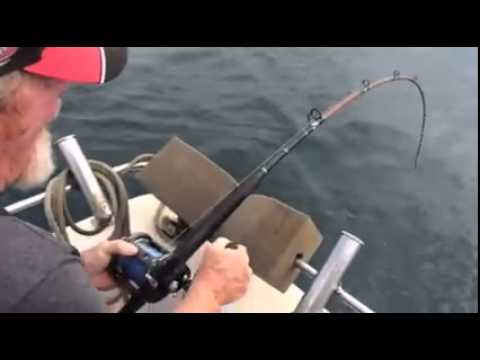 Captain Bucko's Fishing charters from Facebook