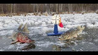 ПЕРШИЙ ЛІД 2018 - 2019!!! Риболовля на жерлицы по першому льоду!!! Ловля щуки по першому льоду.
