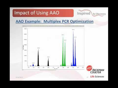 The Power of Automated Assay Optimization Webinar