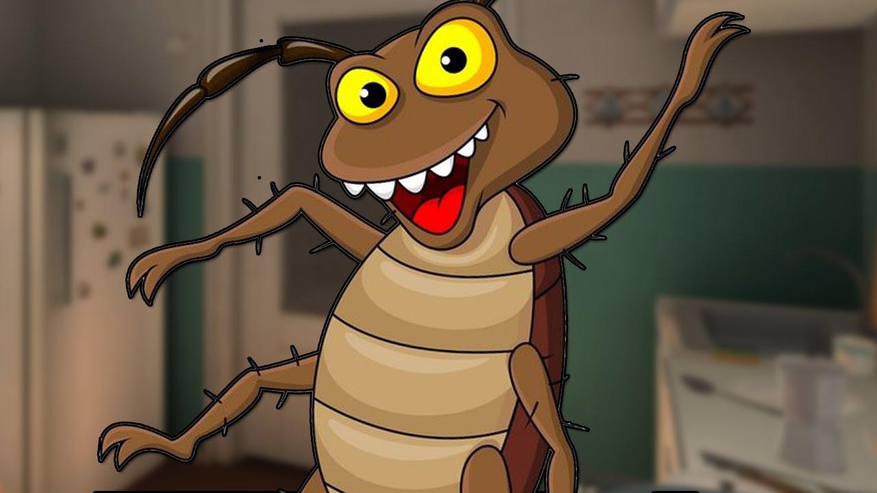 Признание, смешные картинки таракашка