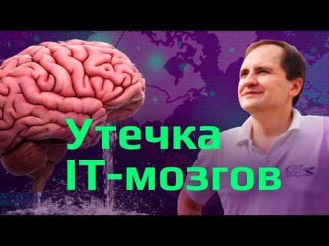 Утечка мозгов из России: 3 МЛН за 3 ГОДА | Информационная безопасность и программирование