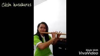 Gambar cover Uning uningan Versi Cicin Boru hutabarat Parsimangumban