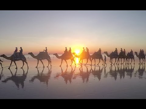 Cable Beach Camel Tour Broome