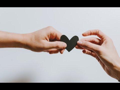 Cardiovax Apa Efek - YouTube