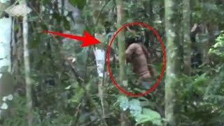 Satu2nya Orang Terakhir dari Suku Amazon Tertangkap Kamera,!