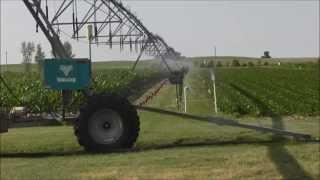 Irrigation Uniformity Testing
