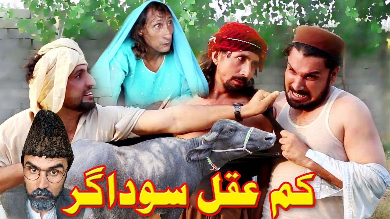 Kam Aqal SodagarComedy Video By Gull Khan Vines