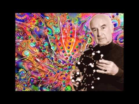SHOKATA - LSD Revolution
