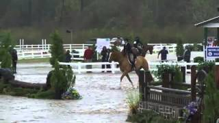 Video of ROCOSO ridden by JULIA CURTIS from ShowNet!
