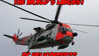 THE WORLD's BIGGEST RC HELICOPTER?