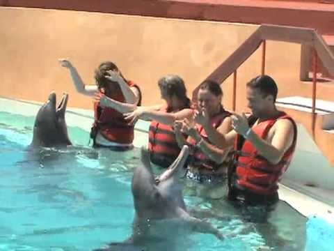 Swim with the Dolphins at Baconao Park, Cuba