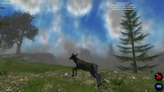 LIF (gameplay) Animal Simulation
