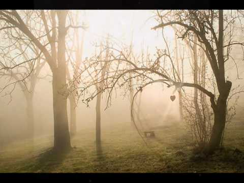 Purcell: Hail! Bright Caecilia - Soul of the World