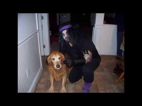 My Top 10 Wrestling Halloween Costumes