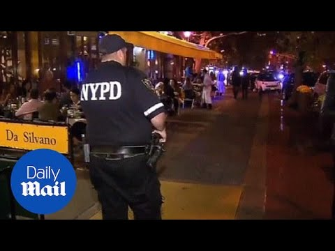Bizarre smoke bomb attack on restaurant rattles NYC diners - Daily Mail