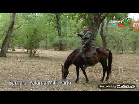 Azərbaycan təbiəti: Samur-Yalama Milli parkı