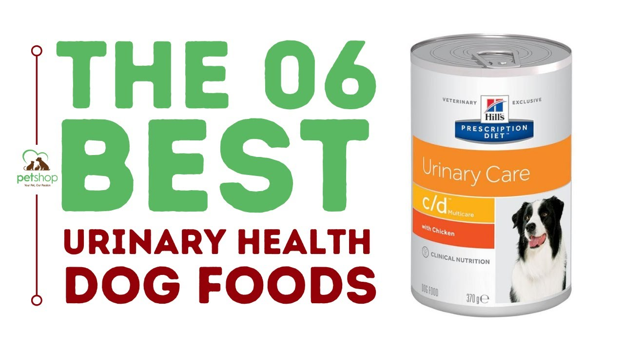 The Best Dog Foods For Urinary Health