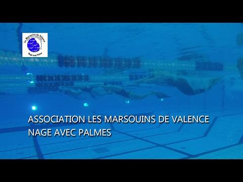 Actu'Sport Les Marsouins de Valence, nage avec palmes