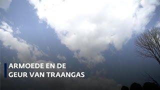 Een reis door Venezuela: armoede en de geur van traangas