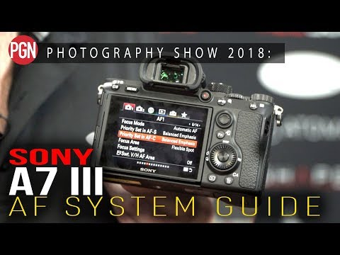 SONY A7 III Autofocus Settings - A Complete Guide To The AF Menu Settings
