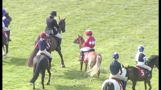 Pony racing authority 2016 wincanton race