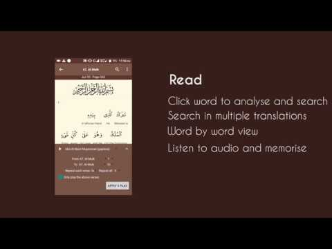 Al Quran (Tafsir & by Word) - Apps on Google Play