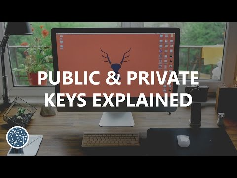 Public & Private Keys Explained (Litecoin/Bitcoin)