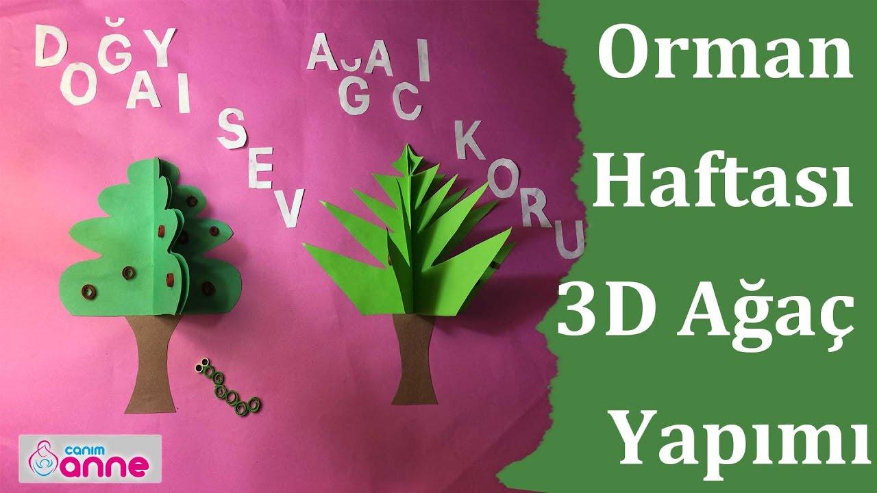 Orman Haftası 3d Ağaç Etkinliği Yapımı Youtube