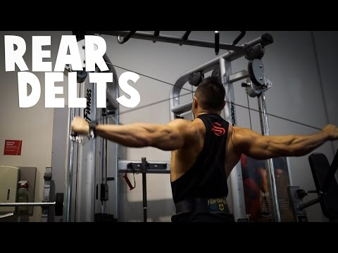 REAR DELT CABLE | Minute On Muscle