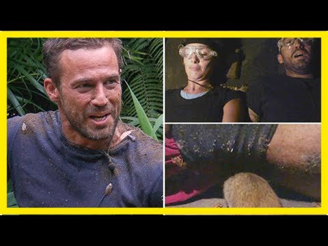 I'm a celebrity's jamie lomas reveals rats went 'up his bum' in terrifying bushtucker trial