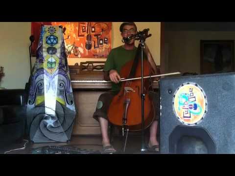 CelloJoe - VeggieManiac