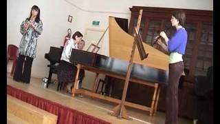 Telemann - Concerto in La minore pour deux flûtes - I. Gravement