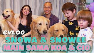 SNOWA & SNOWEE Main Sama KOA & CIO 😁 Mami Celine Diajarin BIMA ARYO