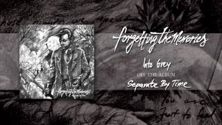 Forgetting The Memories - Into Grey