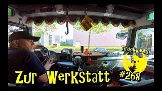 Zur Werkstatt / Truck diary #268