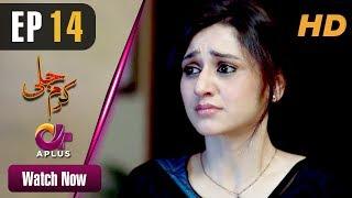 Pakistani Drama | Karam Jali - Episode 14 | Aplus Dramas | Daniya, Humayun Ashraf