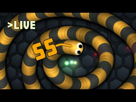 Slither.io Live Stream // Calm Before The Storm