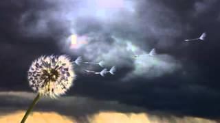 Thunder Rolls (Hip Hop Instrumental)