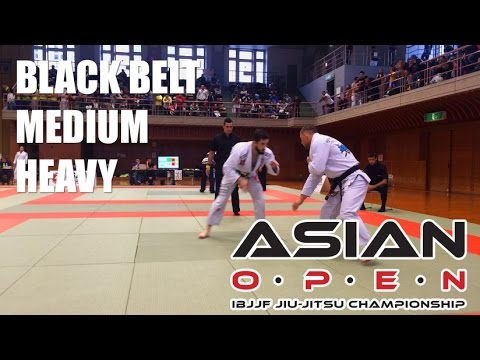 Asian Open 2014 - Black belt adult - Medium Heavy weight Final