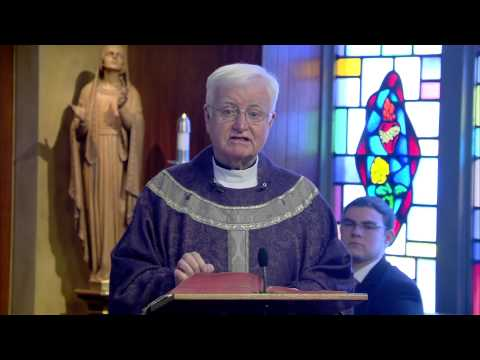 A Guide to Prayer | Homily: Fr Brian Flatley