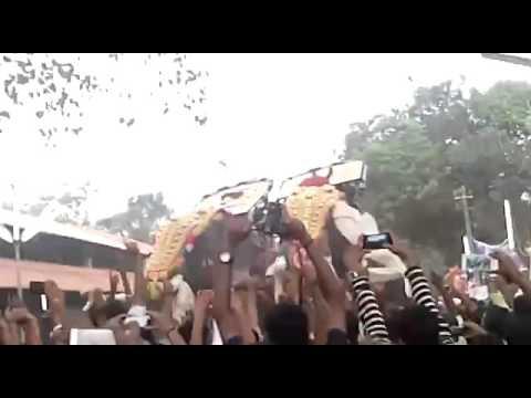 Anayadi pooram 2016 ( chirakkal kalidhasan,thrikkadavoor sivaraju)