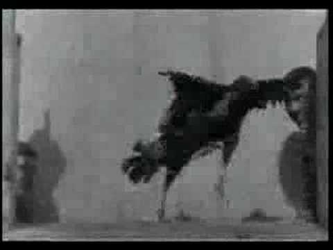 Edison Kinetoscope films