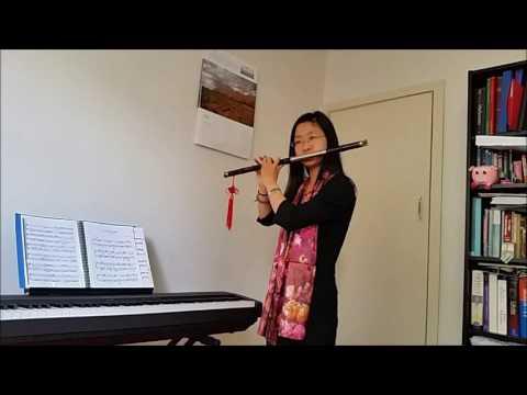 Bawu flute solo-Childhood memory by Bandari