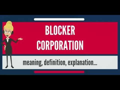 What is BLOCKER CORPORATION? What does BLOCKER CORPORATION mean? BLOCKER CORPORATION meaning