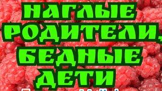 Колесниковы /Наглые родители, бедные дети /Обзор Влогов /