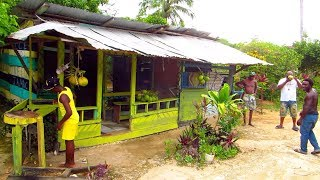 The Jamaica Scene ~ Negril Tropical Farm Adventure